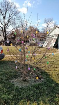 Egg Tree 2