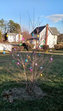 Egg Tree 3