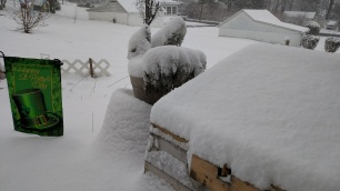 Mar 10 Snow 2