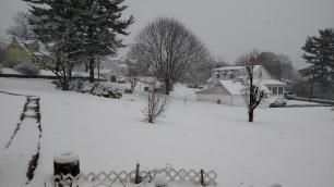 Mar 10 Snow